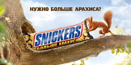 Snickers (1).jpg